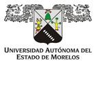 http://www.uaem.mx/organizacion-institucional/actividades-y-convocatorias/plazas-PITC-2014